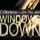 DB-ERK-WINDOWSDOWN