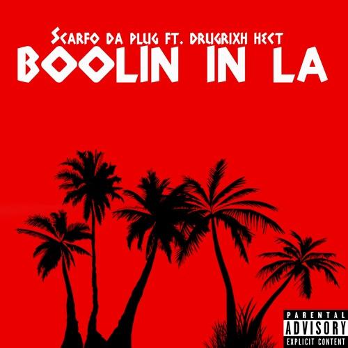 Scarfo Da Plug Feat. Drugrixh Hect 'Boolin In LA'